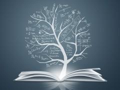 2020年山东力明科技职业学院五年制大专招生要求