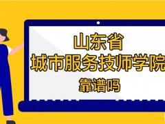 山东省城市服务技师学院靠谱吗
