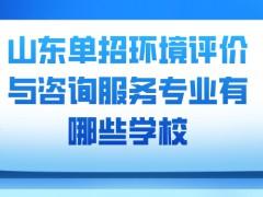 山东单招环境评价与咨询服务专业有哪些学校-山东单招网